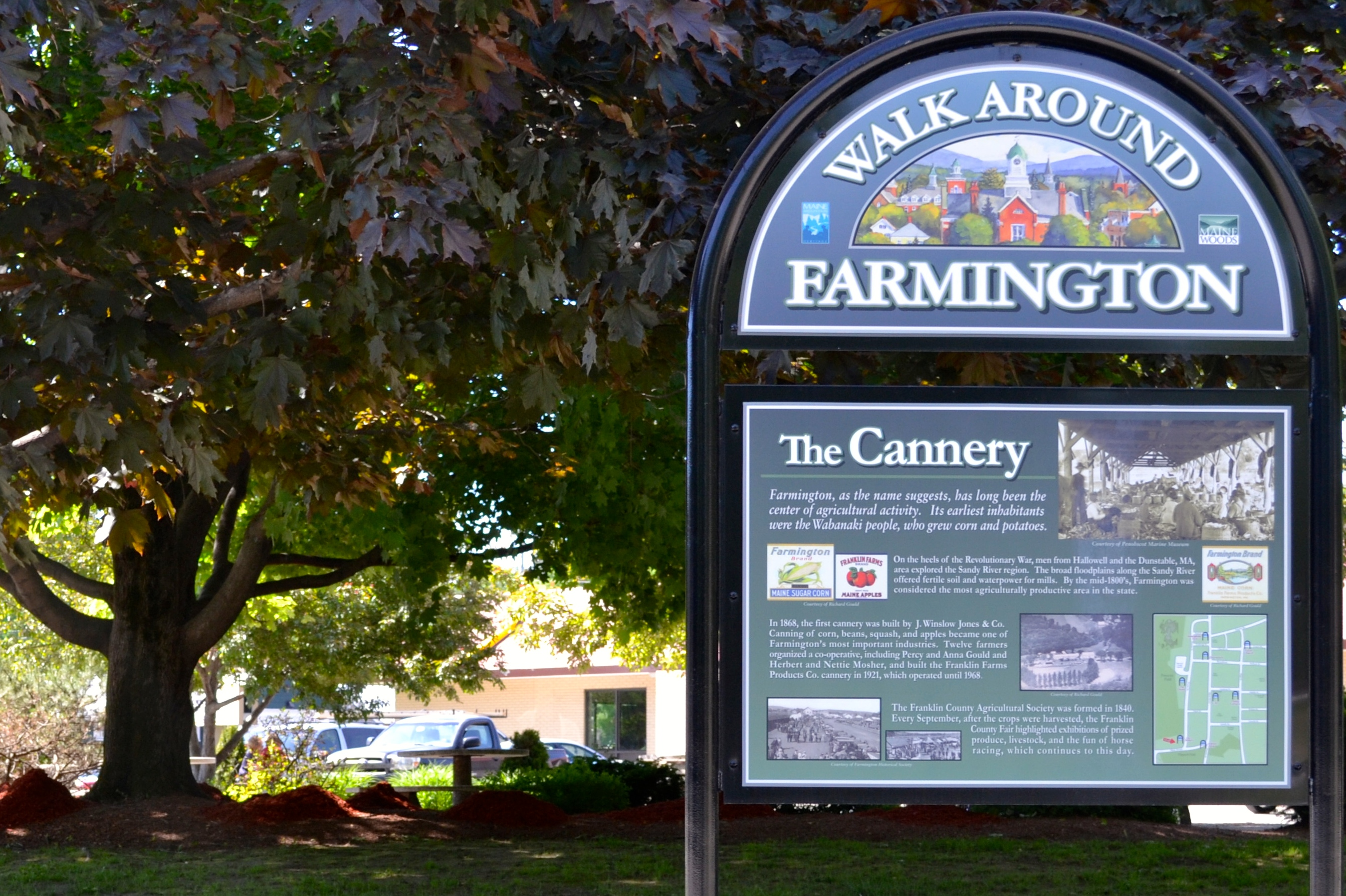 The Cannery Sign